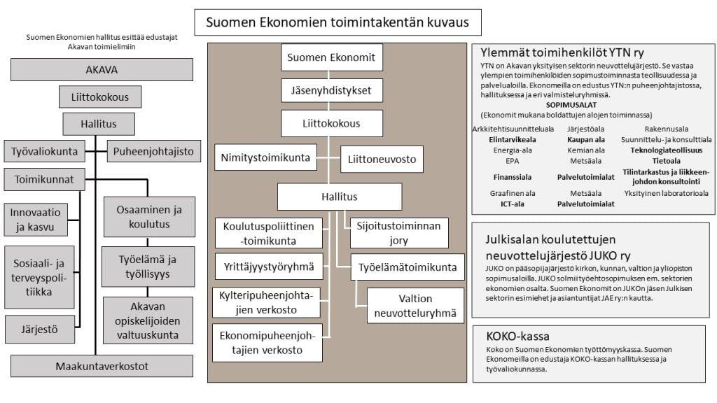 Suomen Ekonomien toimintakentän kuvaus