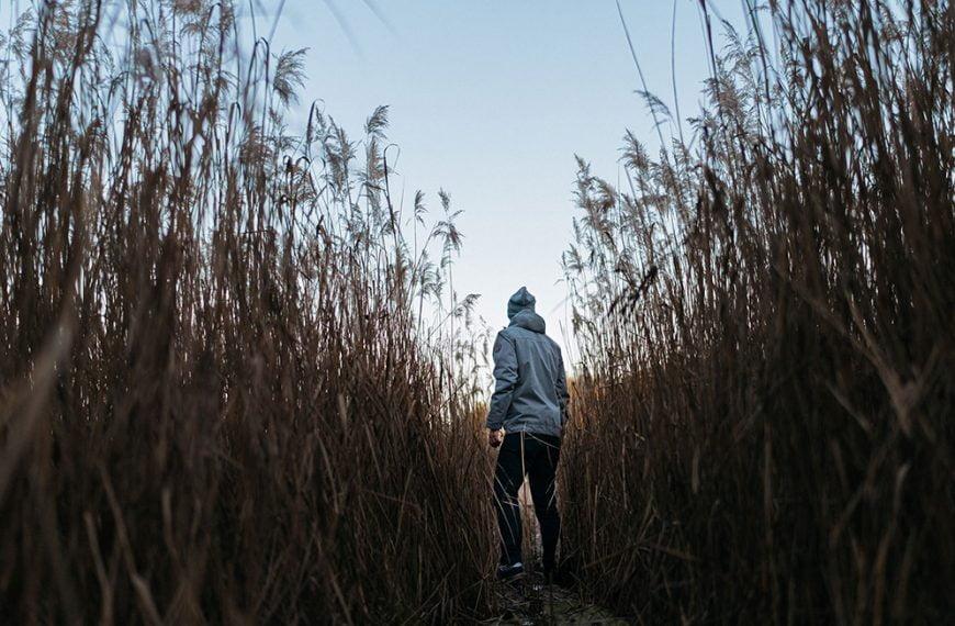 Palkkojen avoimuus herättää intohimoja – Suomen Ekonomien kyselyssä enemmistö kannattaa, osa vastustaa vankasti